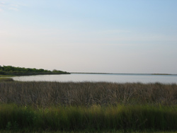 a view of Galveston Bay from the park