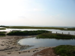 exposed sand bars in West Galveston Bay
