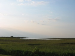looking over the Spartina marsh and Butterowe Bayou in Galveston Island State Park