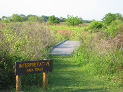 Galveston Island hiking trailhead